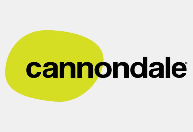 Cannondale grigio-01